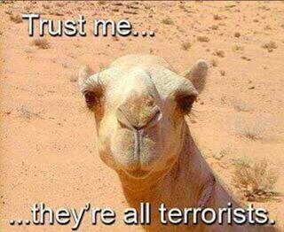 Posts/Politics/Islam/Humour